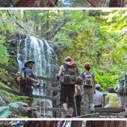APIQWTC Camping Trip – Registration now open!